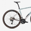 Specialized Diverge Carbon Comp 2021